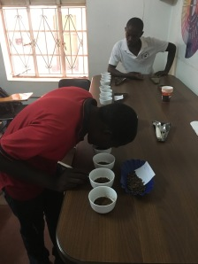 kinghacoffee_grading2
